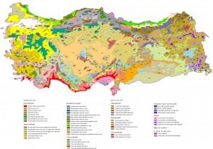 turkiye-bitki-ortusu-haritasi